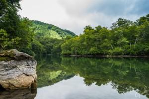 長野県の小谷村にある鎌池を新緑のシーズンに撮影。