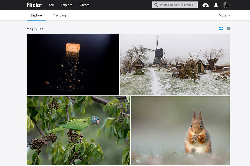 Flickr(フリッカー)はExploreに選ばれたら伸びる