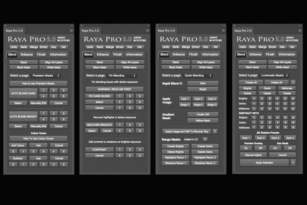 Raya Pro 2.0 ブレンド