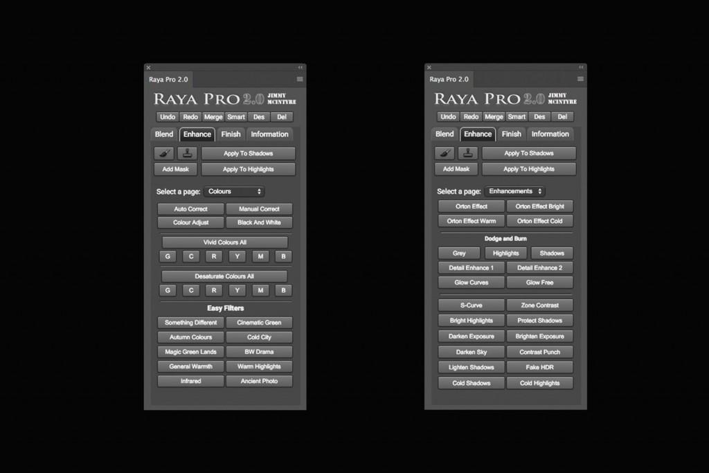 Raya Pro 2.0 エンハンス